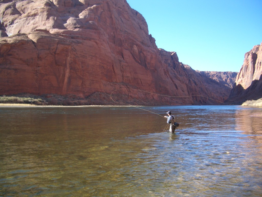 Fly fishing at Lees Ferry