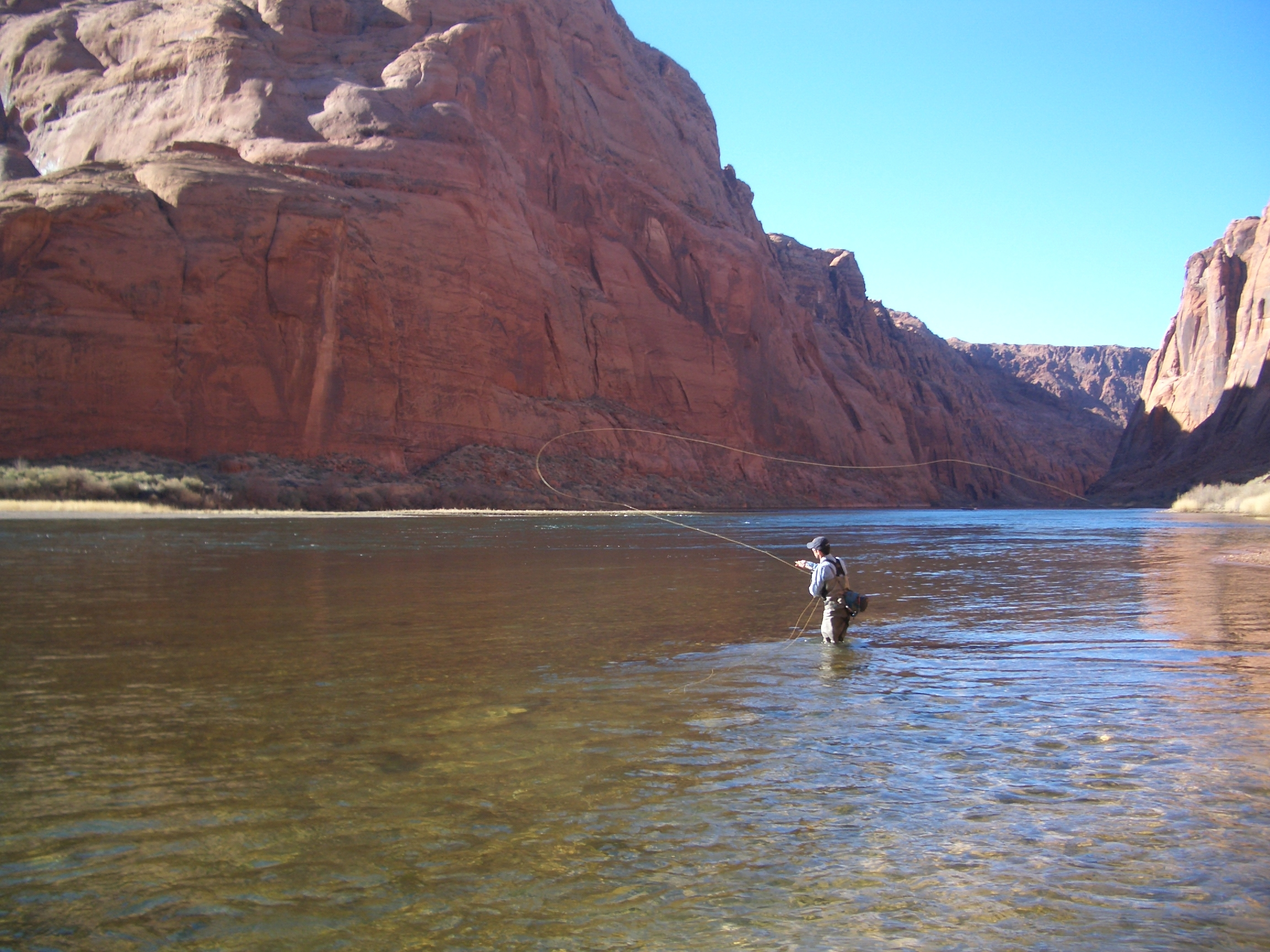 Lees ferry fishing guides trout fly fishing spin fishing for Arizona fishing guides